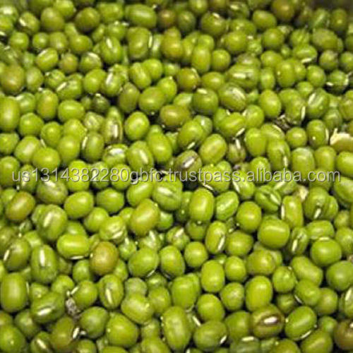 Quality Hand Sorted Best Selling Products Top Quality Green Mung Beans