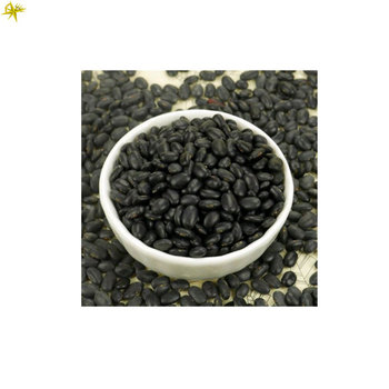 Competitive Price of Bulk Selling High Quality Black Dried Kidney Beans for Wholesale Purchase