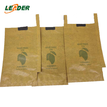 fruit pear protection growing paper bag on tree