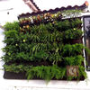 Vertical garden outdoor indoor felt wall pocket- green wall panels