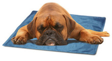 The Cool Pet Pad for Dogs and Cats