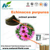 high quality echinacea purpurea root powder extract/cichoric acid with competitive price