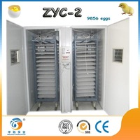 fully automatic eggs for hatching crocodile hatching eggs ZYC-2 best price