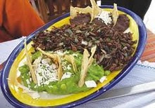 Chapulines, grasshoppers Exotic Food
