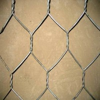 ISO9001 plastic coating / galvanized chicken wire mesh
