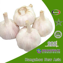 extract garlic product