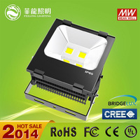 Cree chip Meanwell driver led flood light housing 100w dimmable led flood light