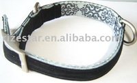 pet collar / Dog collar / cat collars
