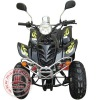 Gas-Powered 4-Stroke Engine EEC APPROVED ATV WZAT1101EEC