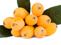Pakistani fresh fruit Manufacturer , high quality natural Loquat