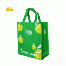 2012 Latest design resuable non woven bag for shopping