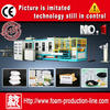 2014 High output fruit tray production line