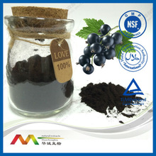 Natural Colour Anti-Oxidants Plant Extract Blueberry Extract