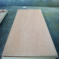 bintangor/birch/pencil cedar/pine face back 18mm plywood for furniture