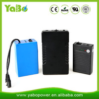New style Crazy Selling Factory products flat cell lithium ion battery with unique design