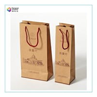 New Fashion Craft Popular Paper Gift Bag