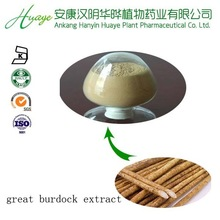 hot selling and low price fresh burdock root extract