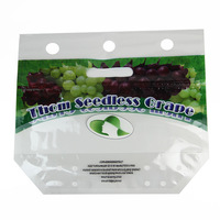 Reusable CMYK handle customized variety grapes plasitc bags