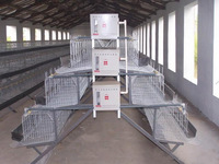 Professional design durable layer cage with low disease and death rate