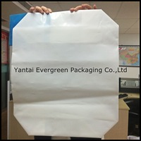 PE valve bag for coffee packaging, block bottom plastic bags with 20kg-50kg capacity.