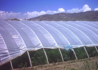Agriculture plastic film for green house