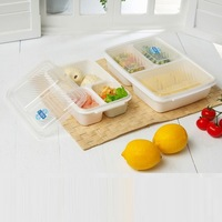 3 Lunch Boxes Multi Colors divided Food storage containers plates lids BPA free