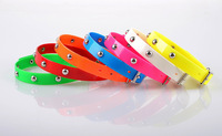 best selling anti flea collar for dog