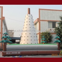 Guangzhou Manufacturer New Product Inflatable Sports Arena For Sale