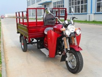 Chinese Air-cooled Cargo 3 wheel motorcycle for sale