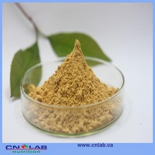 Organic Artichoke Leaves Powder
