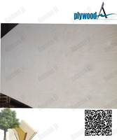 linyi supply15mm E1 furniture grade white birch plywood
