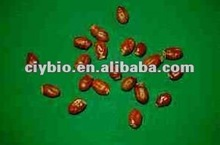 100% Natural product for Dispelling cold:Lychee Seed Extract