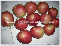 2012 FRESH RED STAR APPLE