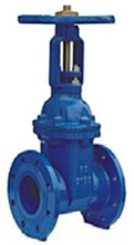 Ring stem resilient soft seated gate valve BS5163