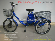 3 wheel motor bike, three wheel motorized electric cargo tricycle with our Smart Pie Hub Motor