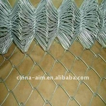 Anping chain link fence/Garden edging products(factory)