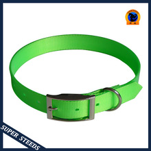 Flea dog training collar