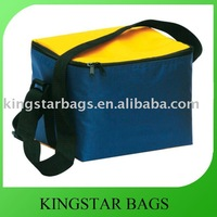 soft cooler made in 600*300D polyester