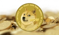Buy 30,000 dogecoins straight in your Dogecoin wallet, with Paypal.
