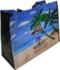 Hottest plain recycle promotional bag