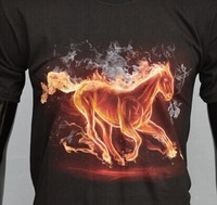 All Over 3D Print Wild Horses Fashion Men's And Ladies t shirt printing
