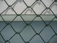PVC/ Galvanized Chain Link Fence for high quality