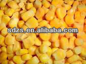 good quality corn grain with competitive price