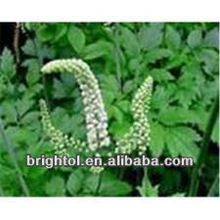 natural plant Black Cohosh powder extract