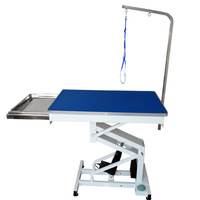 Lifting dog grooming table with tool tray N-106A