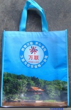 Newly customized laminated bags for kids