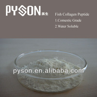 Water soluble Comestic Grade Fish Collagen Powder / Tablet