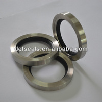 Double Lip Stainless Steel PTFE Oil Seals