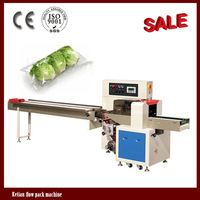 Down-paper Pillow Packing Machine for Lettuce Packing