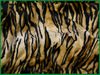 "Hot Sale 100%polyester 58"" 240gsm Wave Embossing fake tiger fur"